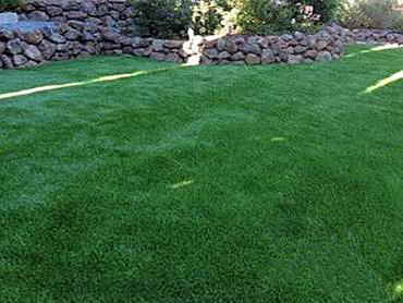 Artificial Grass Photos: Plastic Grass Saint Augustine, Florida Rooftop, Backyard Design