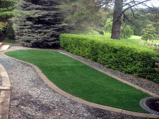 Artificial Grass Photos: Synthetic Grass Cost Four Corners, Florida Landscaping