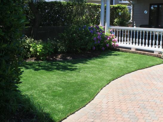 Artificial Grass Photos: Synthetic Grass Cost Winter Park, Florida Landscaping, Front Yard Design