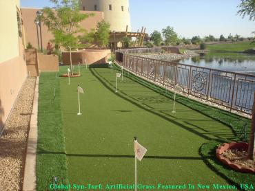 Synthetic Grass Fruit Cove, Florida Indoor Putting Green, Backyards artificial grass