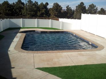 Artificial Grass Photos: Synthetic Grass Port Saint John, Florida Backyard Playground, Backyard Pool