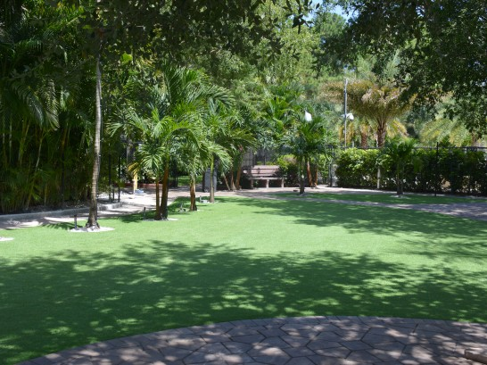 Artificial Grass Photos: Synthetic Lawn Lake Lindsey, Florida Lawn And Garden, Pavers