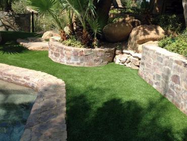 Artificial Grass Photos: Synthetic Lawn Pine Ridge, Florida Watch Dogs, Backyard Ideas