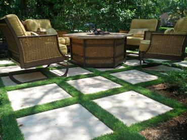 Artificial Grass Photos: Synthetic Lawn Windermere, Florida Landscaping, Backyard Landscaping
