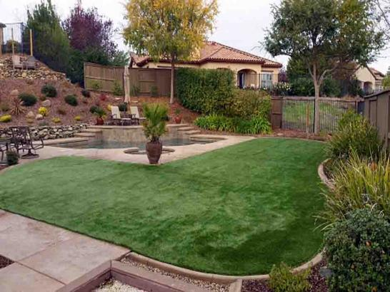 Artificial Grass Photos: Synthetic Turf Mayo, Florida Garden Ideas, Backyard Makeover