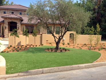 Artificial Grass Photos: Synthetic Turf Oak Hill, Florida Roof Top, Front Yard Landscaping Ideas
