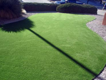 Artificial Grass Photos: Synthetic Turf Supplier Holden Heights, Florida Gardeners, Front Yard Ideas