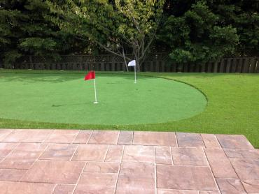 Artificial Grass Photos: Synthetic Turf Supplier Inverness, Florida Indoor Putting Greens, Backyard Landscape Ideas