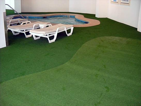 Artificial Grass Photos: Synthetic Turf Supplier Lockhart, Florida Landscape Photos, Natural Swimming Pools