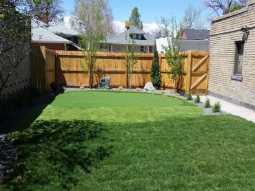Artificial Grass Photos: Synthetic Turf Supplier Ponce Inlet, Florida Backyard Putting Green, Backyard Garden Ideas
