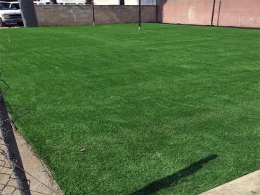 Artificial Grass Photos: Synthetic Turf Supplier Yulee, Florida Sports Turf
