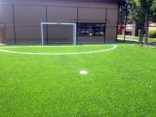 Artificial Grass Photos: Synthetic Turf Timber Pines, Florida Landscaping Business