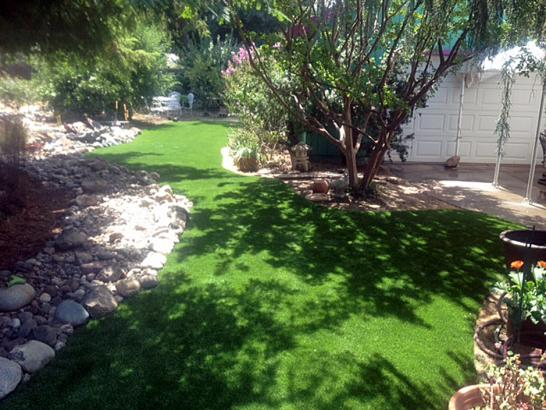 Artificial Grass Photos: Synthetic Turf Wedgefield, Florida Landscaping Business, Backyard Design