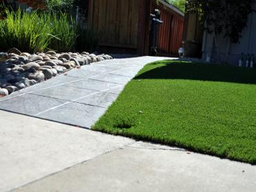 Artificial Grass Photos: Turf Grass Inverness Highlands North, Florida Landscaping, Front Yard Ideas