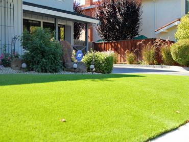 Artificial Grass Photos: Turf Grass Lake Mary, Florida Home And Garden, Front Yard Landscaping