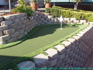 Turf Grass Nassau Village-Ratliff, Florida Diy Putting Green, Backyard Landscaping artificial grass