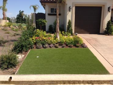 Artificial Grass Photos: Turf Grass Orange Park, Florida Lawns, Front Yard Landscaping
