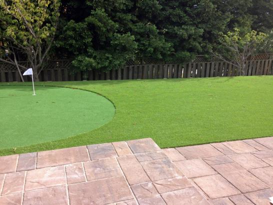 Artificial Grass Photos: Turf Grass Weeki Wachee Gardens, Florida Landscape Photos, Backyard Designs