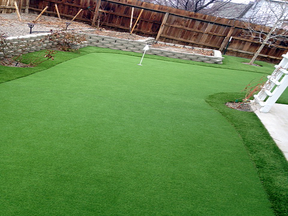 Synthetic Gr Cost Beverly Hills Florida Putting Green Carpet